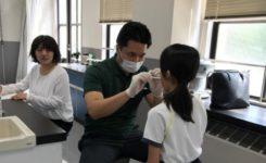 学校歯科検診 予防歯科